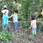 自然の中で遊びを創る体験