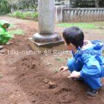 幼児期におけるごっこ遊びの役割