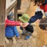 ごっこ遊びは最高の幼児教育プログラム