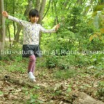 森のようちえんを作る環境と体験