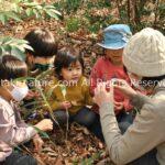 環境を通して指導し、体験を通して学ぶ